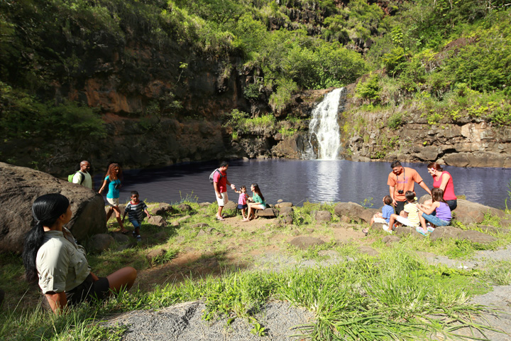 Waimea Falls � North Shore Experience